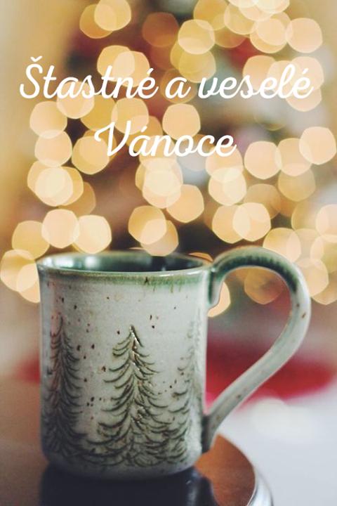 Přejeme Vám šťastné a veselé Vánoce!