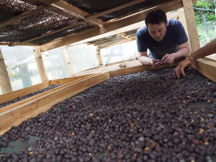 Tento víkend bude na mlýnku úžasná kolumbijská káva Cocondo natural